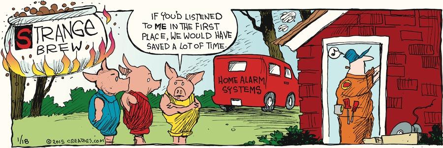 Strange Brew Comic Strip for January 18, 2015