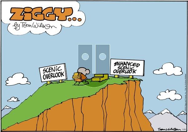 Ziggy on Sunday November 29, 2020 Comic Strip