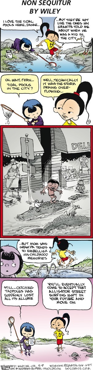 Non Sequitur on Sunday May 9, 2021 Comic Strip