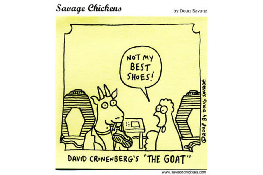 Chicken: Not my best shoes! 