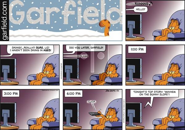 Garfield on Sunday January 31, 2016 Comic Strip