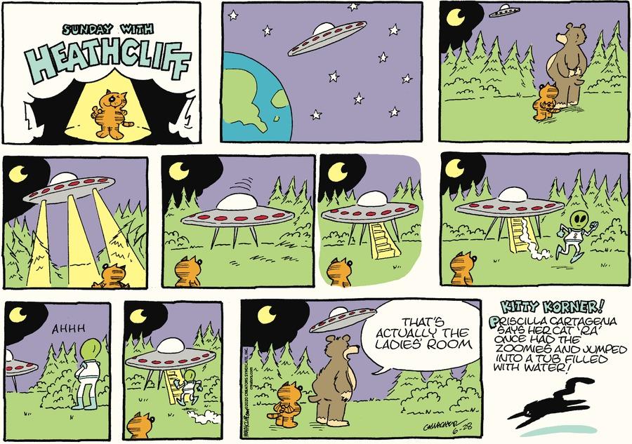 Heathcliff Comic Strip for June 28, 2020