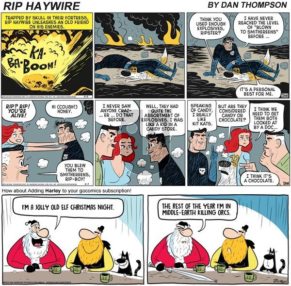 Rip Haywire on Sunday December 13, 2020 Comic Strip