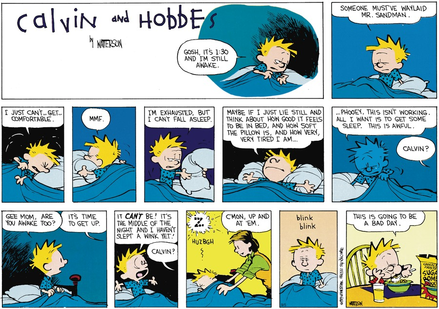 Calvin and Hobbes Comic Strip for October 22, 1989