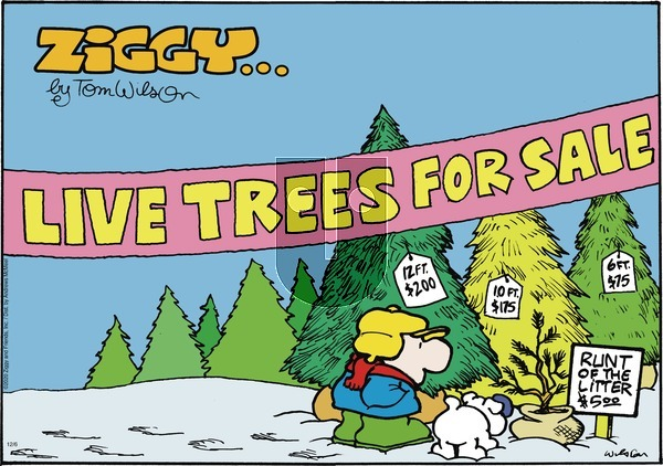 Ziggy on Sunday December 6, 2020 Comic Strip
