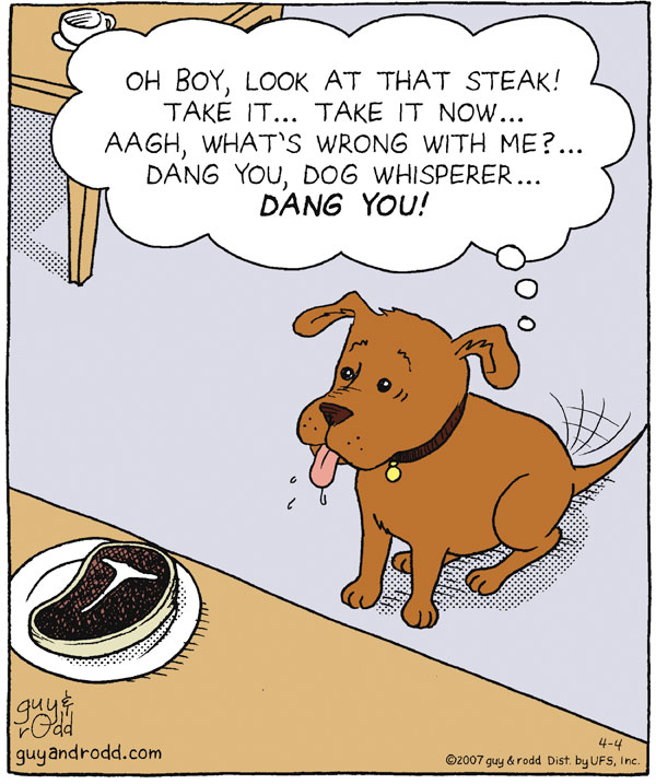 """Oh boy, look at that steak! Take it...Take it now...Aagh, what's wrong with me?...Dang you, dog whisperer...Dang you!"""