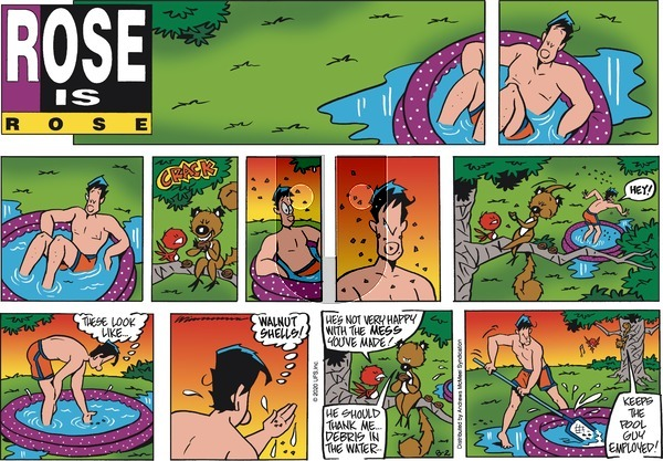 Rose is Rose on Sunday August 2, 2020 Comic Strip