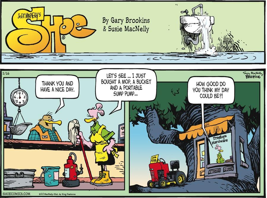 Shoe Comic Strip for February 16, 2020