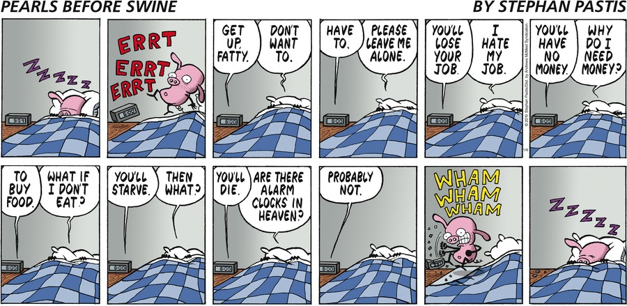 Pearls Before Swine Comic Strip for January 06, 2019