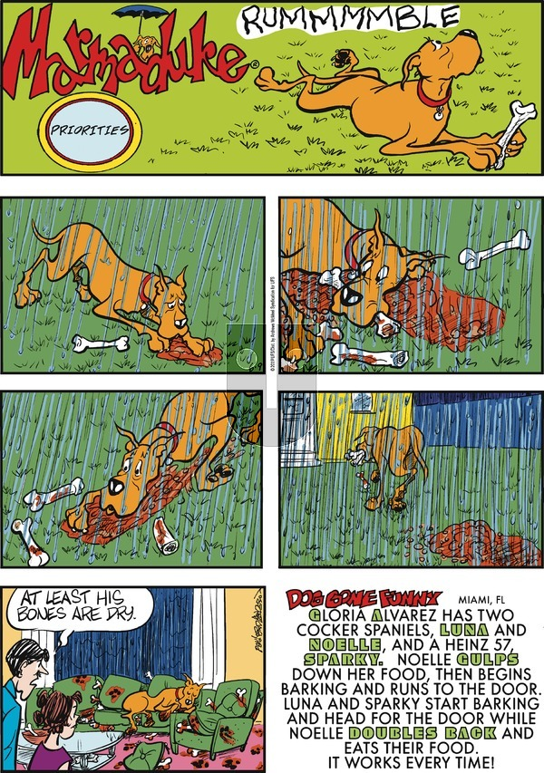 Marmaduke on Sunday June 9, 2019 Comic Strip