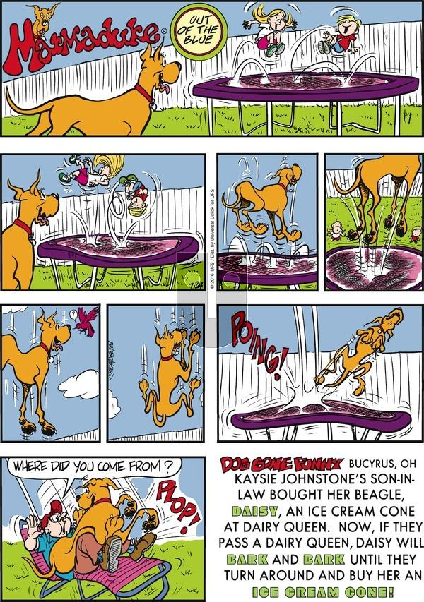 Marmaduke on Sunday July 24, 2016 Comic Strip
