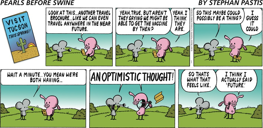 Pearls Before Swine Comic Strip for January 17, 2021