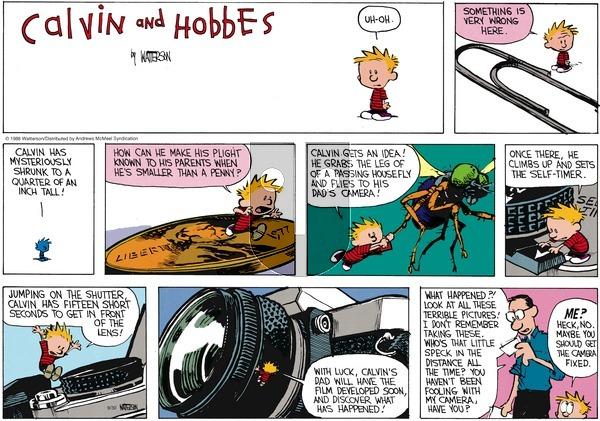 Calvin and Hobbes - Sunday September 30, 2018 Comic Strip