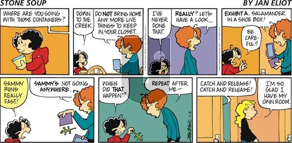 Stone Soup on Sunday November 8, 2015 Comic Strip