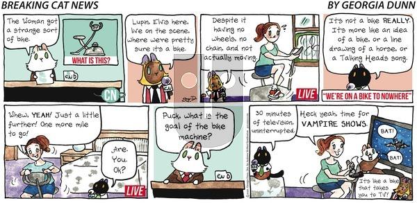 Breaking Cat News on Sunday September 6, 2020 Comic Strip