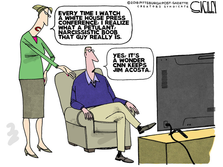 Steve Kelley Comic Strip for November 09, 2018