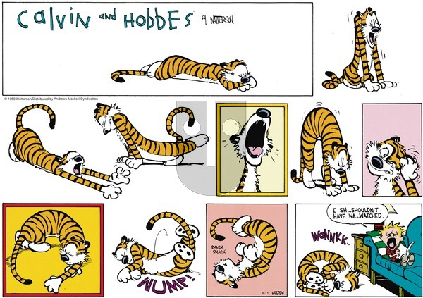 Calvin and Hobbes - Sunday August 11, 2019 Comic Strip