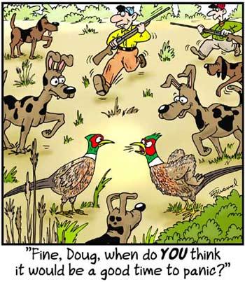 Birdbrains Comic Strip for January 19, 2020