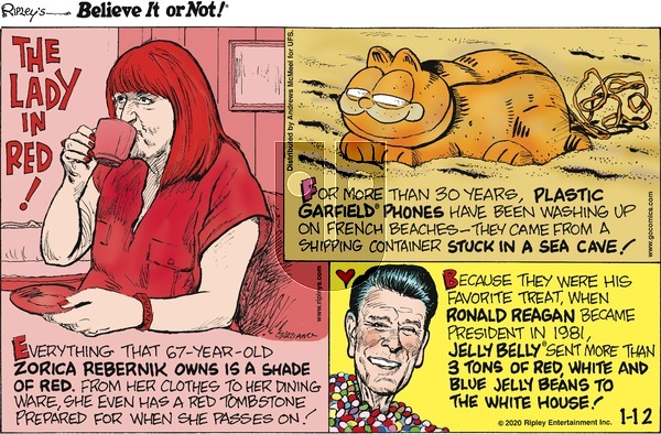 Ripley's Believe It or Not on Sunday January 12, 2020 Comic Strip