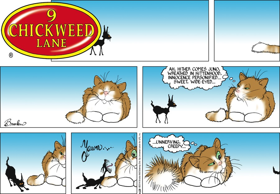 9 Chickweed Lane for Apr 20, 2014 Comic Strip