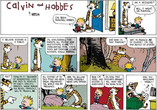 Calvin and Hobbes - Sunday November 5, 1989 Comic Strip