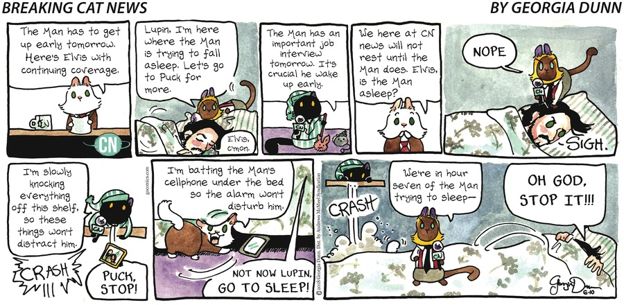 Breaking Cat News for Jun 10, 2018 Comic Strip