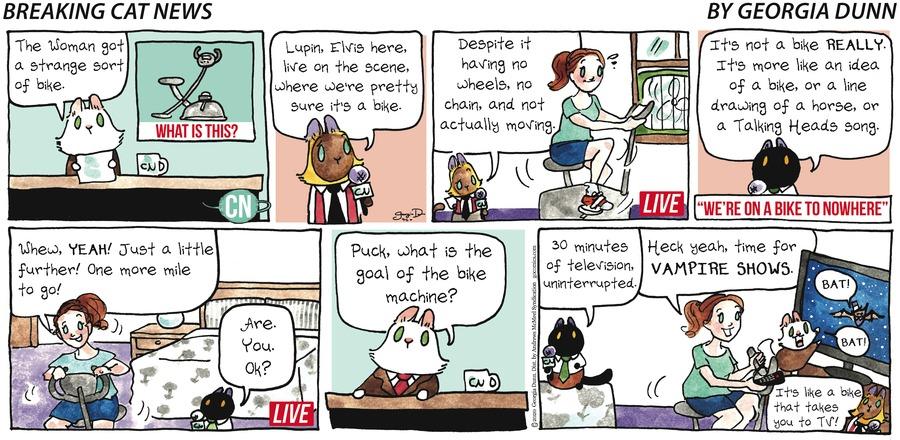 Breaking Cat News Comic Strip for September 06, 2020