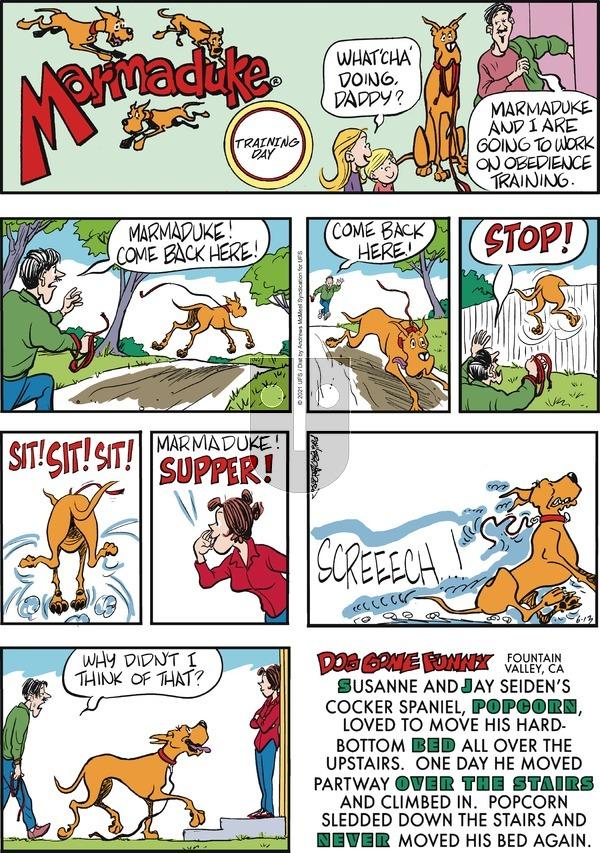 Marmaduke - Sunday June 13, 2021 Comic Strip