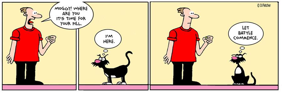 Crumb Comic Strip for May 29, 2021