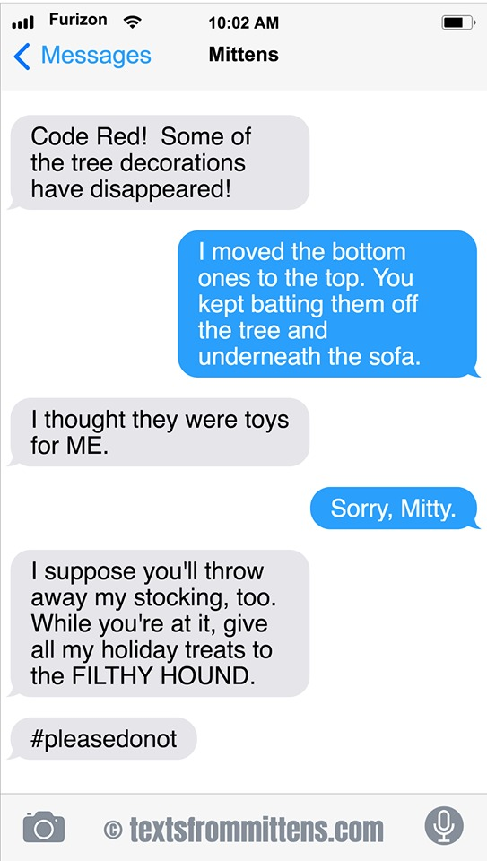 Texts From Mittens Comic Strip for December 01, 2019