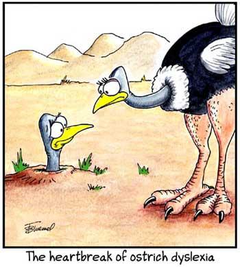 Birdbrains Comic Strip for June 21, 2021