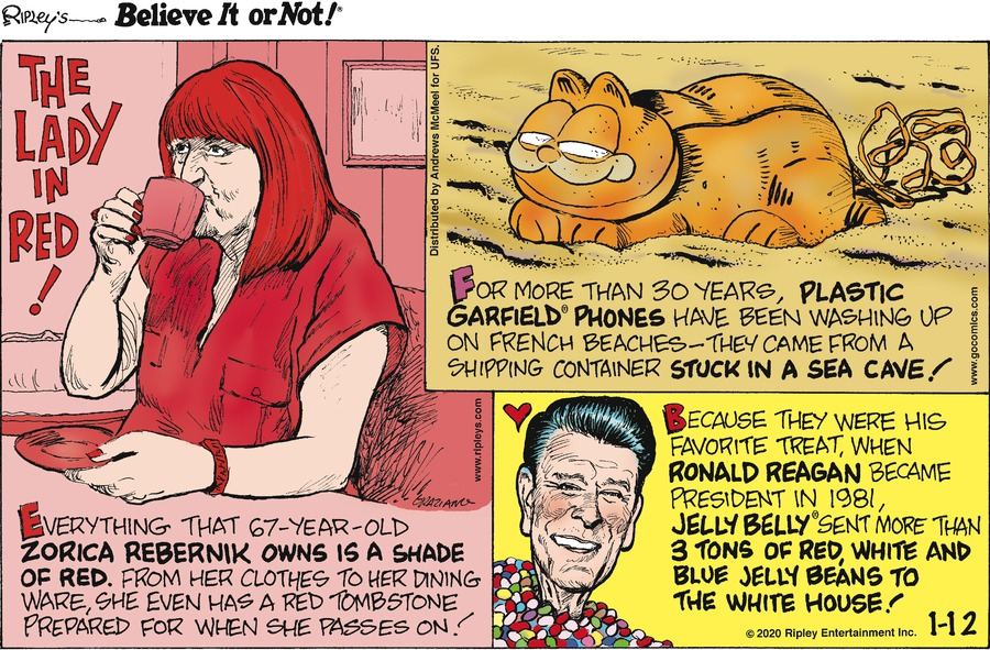 Ripley's Believe It or Not Comic Strip for January 12, 2020