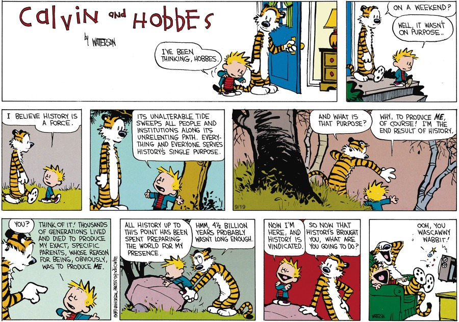Calvin and Hobbes Comic Strip for November 05, 1989