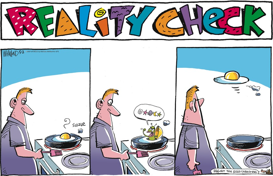 Reality Check by Dave Whamond on Sun, 02 May 2021