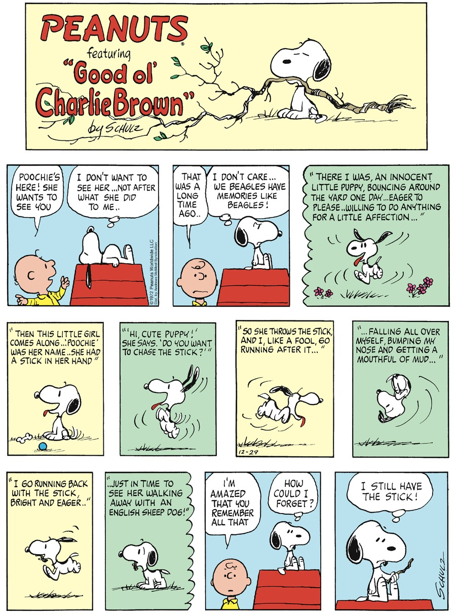 Peanuts Comic Strip for December 29, 2019