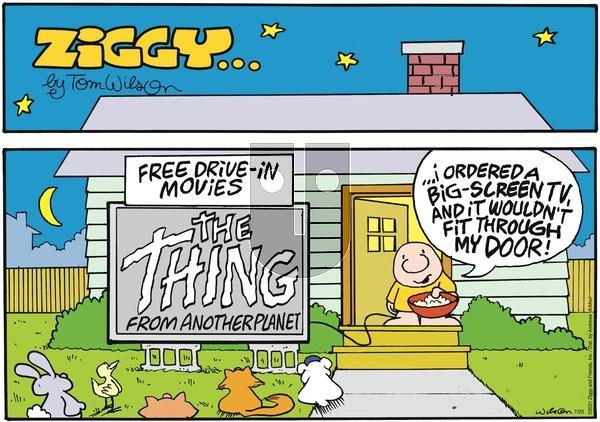 Ziggy on Sunday July 25, 2021 Comic Strip