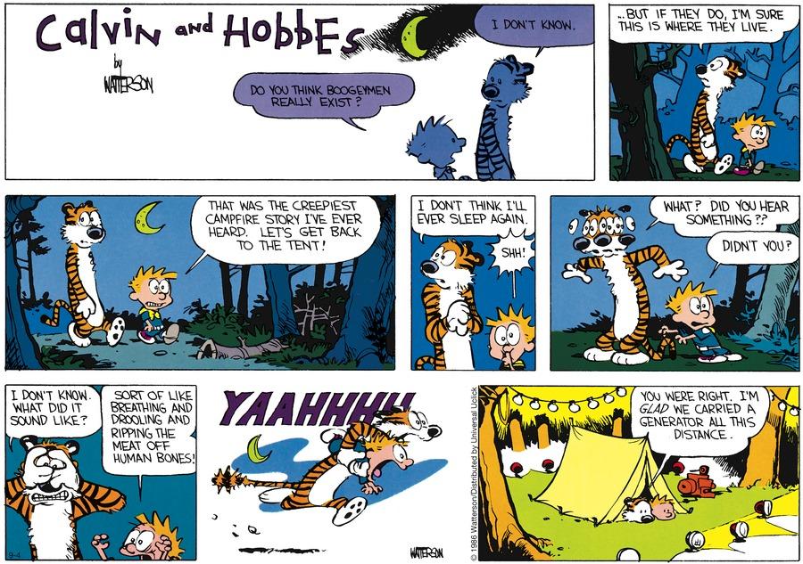 Calvin and Hobbes Comic Strip for September 04, 2016