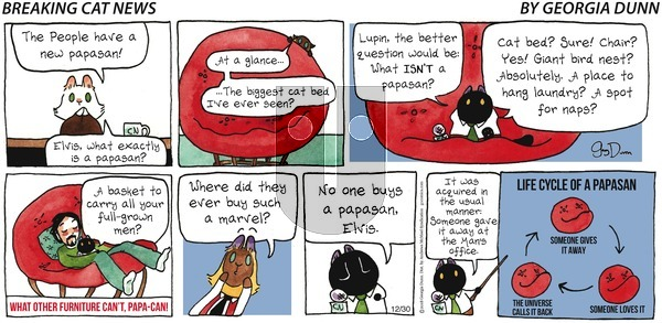 Breaking Cat News on Sunday December 30, 2018 Comic Strip