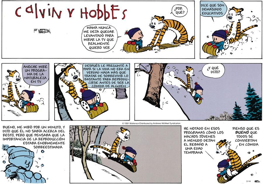 Calvin and Hobbes en Español by Bill Watterson on Sun, 14 Feb 2021