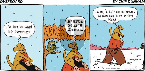 Overboard on Sunday December 29, 2013 Comic Strip