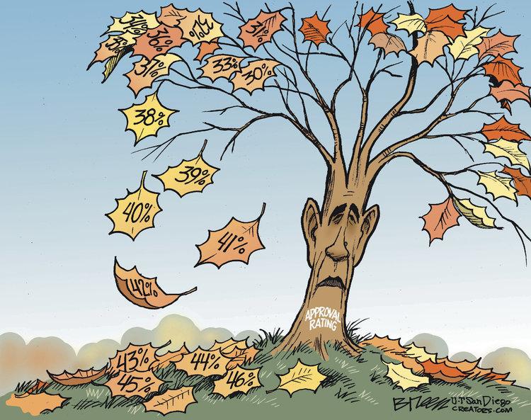 Steve Breen for Nov 6, 2013 Comic Strip