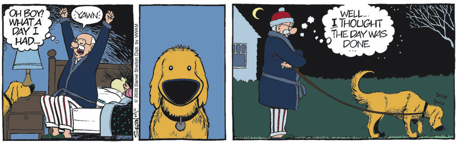 Ben Comic Strip for November 02, 2020