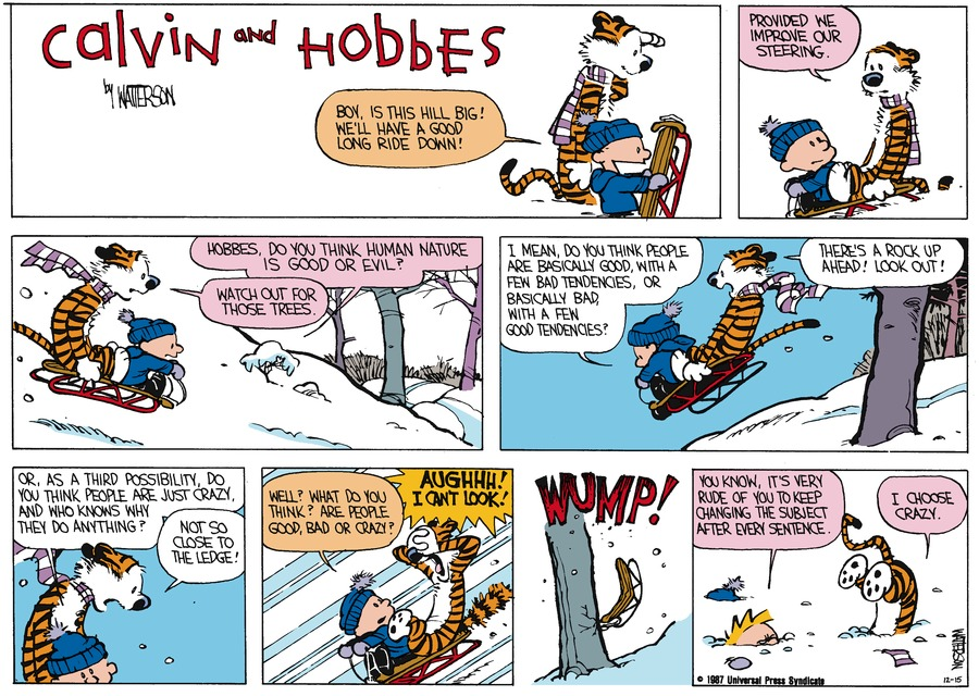 Calvin and Hobbes Comic Strip for January 11, 1987