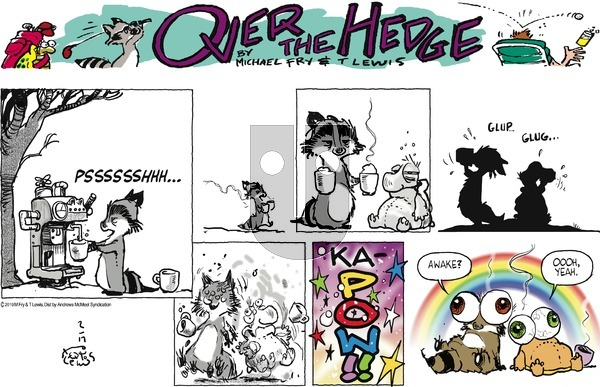 Over the Hedge on Sunday February 17, 2019 Comic Strip
