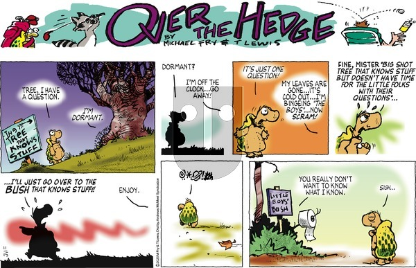 Over the Hedge on Sunday November 15, 2020 Comic Strip