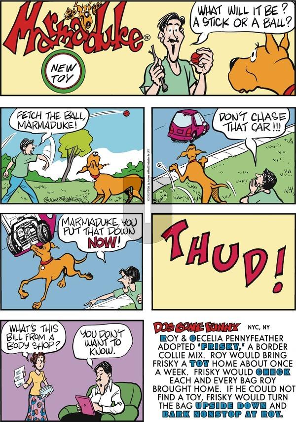 Marmaduke - Sunday May 17, 2020 Comic Strip