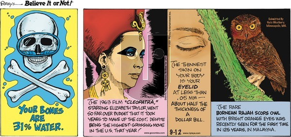Ripley's Believe It or Not on Sunday September 12, 2021 Comic Strip