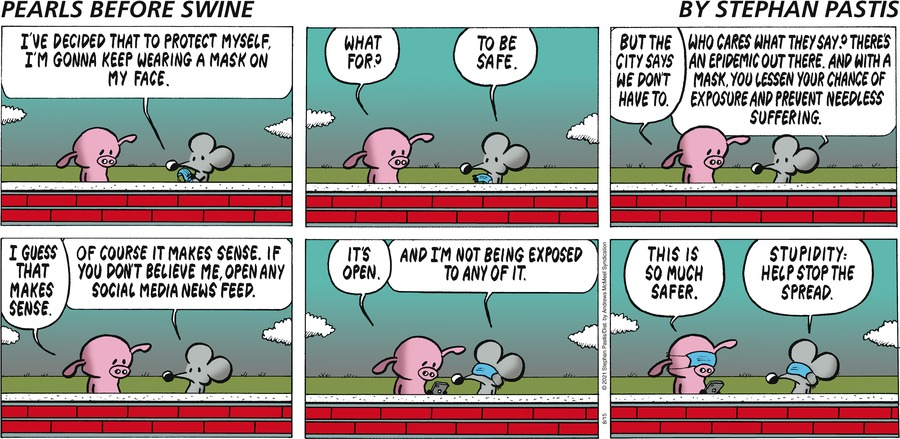 Pearls Before Swine Comic Strip for August 15, 2021