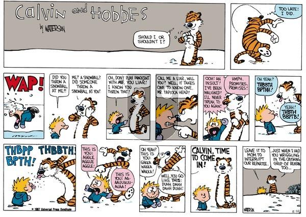 Calvin and Hobbes - Sunday January 18, 1987 Comic Strip