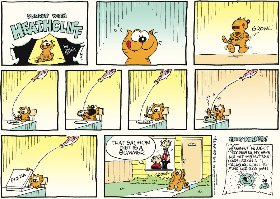 Heathcliff Comic Strip for March 03, 2013